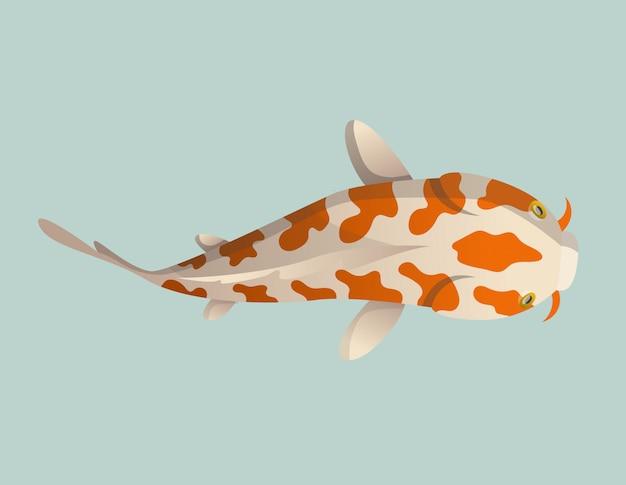 Peixe calmamente flutuante. carpa japonesa dos peixes de koi, koi oriental colorido em ásia. peixe dourado chinês, pesca tradicional Vetor Premium