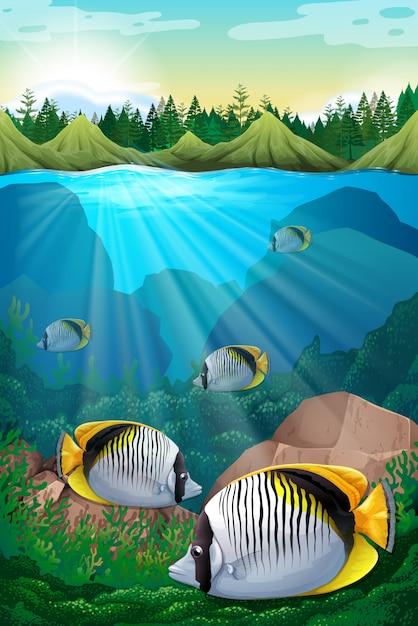 Peixe, natação, sob, oceânicos Vetor Premium