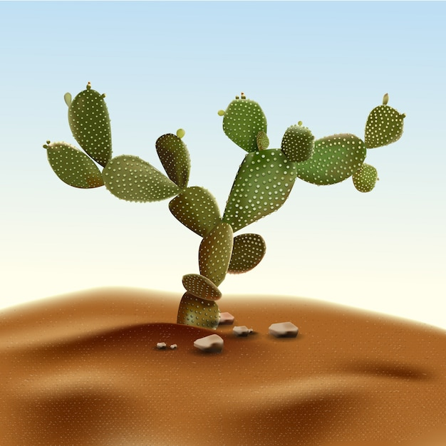 Pera espinhosa do cacto realístico do deserto. planta do opuntia do deserto entre a areia e as rochas no habitat. Vetor Premium