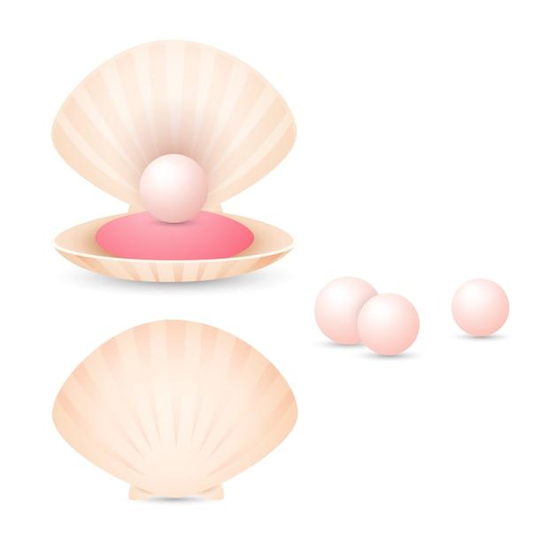 Pérola rosa clara com casca Vetor grátis