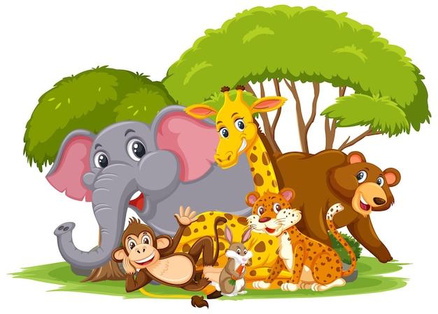 Personagem de desenho animado do grupo de animais selvagens em fundo branco Vetor Premium