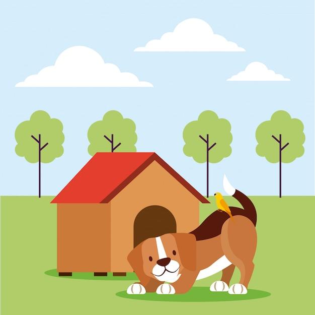Pet shop relacionados Vetor grátis