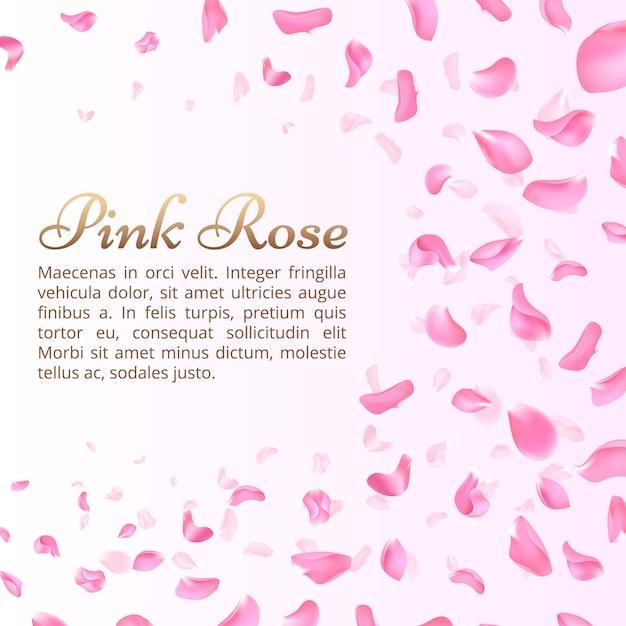 Pétalas cor-de-rosa da rosa ou do sakura de queda. elegante fundo romântico Vetor Premium