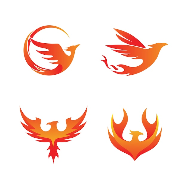 Phoenix fire set coleção logo vector Vetor Premium