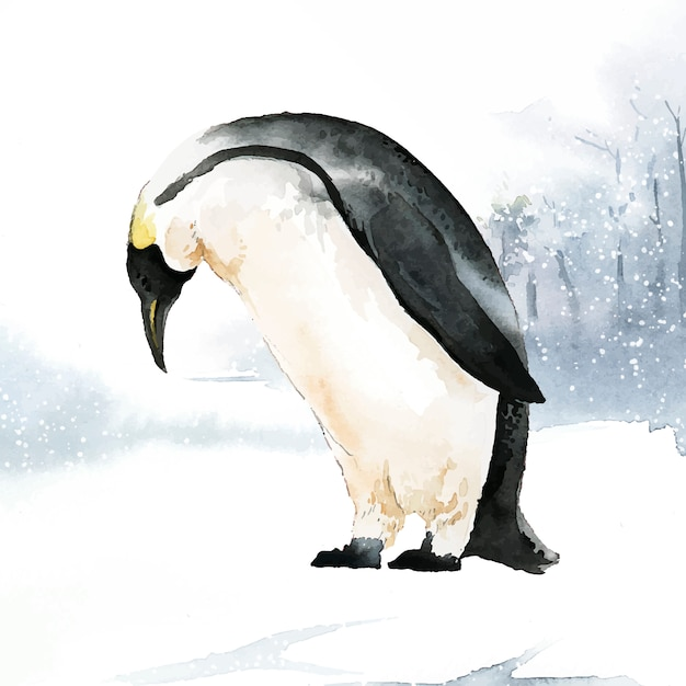 Pinguim Vetor grátis