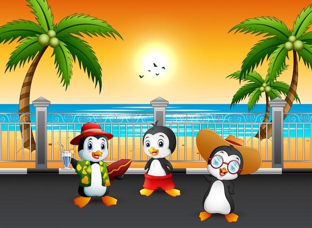 Pinguins de férias de verão na rua à beira-mar Vetor Premium