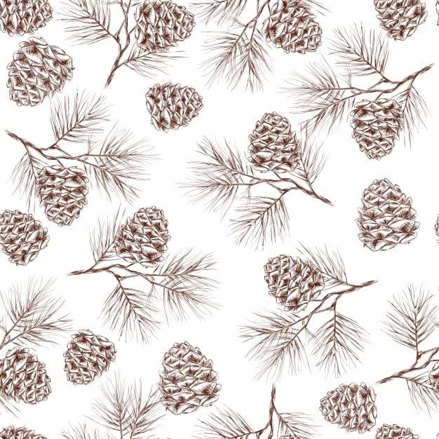 Pinheiro árvore de natal cedro abeto e cones padrão sem costura ilustração vetorial Vetor grátis