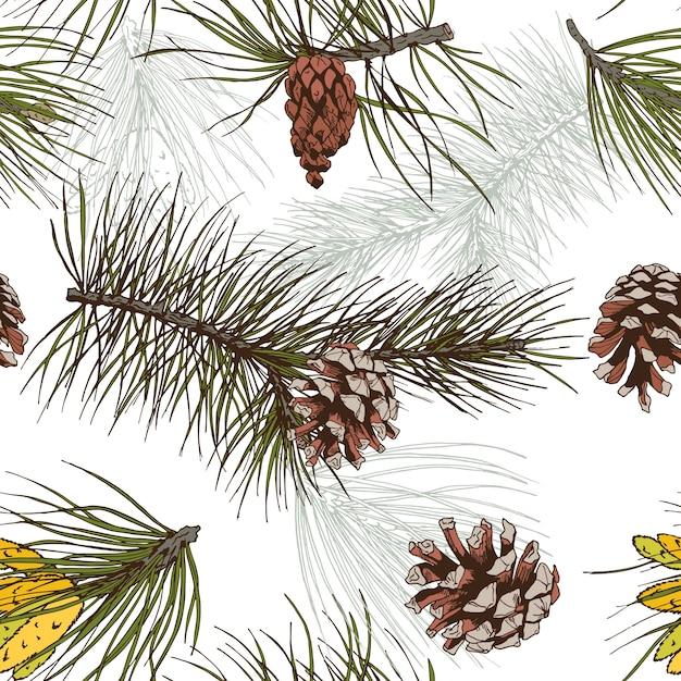 Pinos e ramos de pinheiros coloridos floresta madeira padrão sem costura ilustração vetorial Vetor grátis
