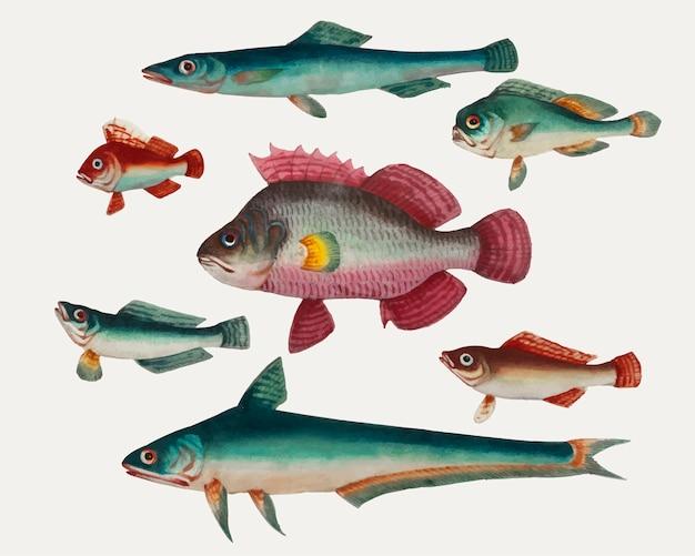 Pintura chinesa de um peixe rosa Vetor grátis