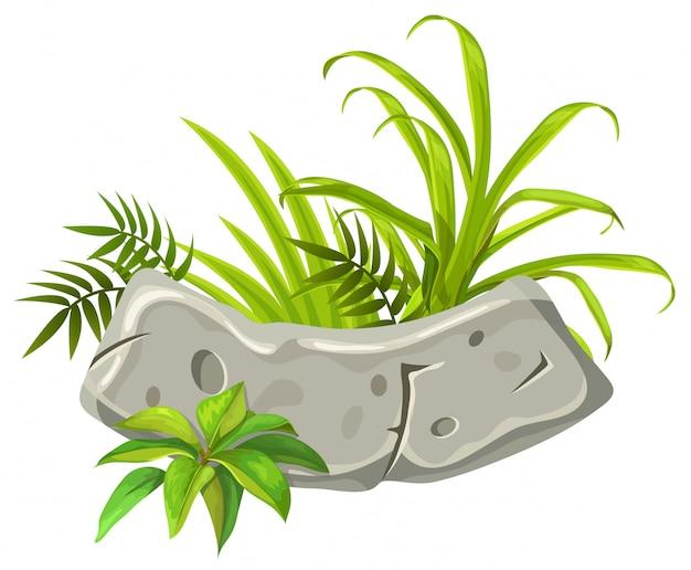 Placa de pedra com folhas e grama tropicais. Vetor Premium