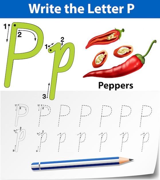 Planilhas de alfabeto de traçado da letra b Vetor Premium