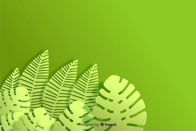 Plano de fundo monocromático monstera planta Vetor grátis