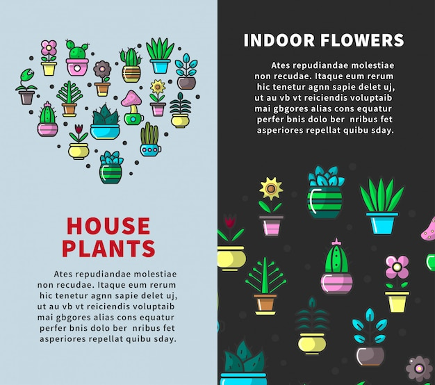 Plantas da casa e cartazes de flores interiores Vetor Premium