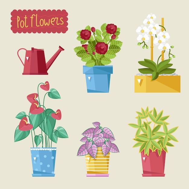 Plantas de casa bonita setlig Vetor Premium