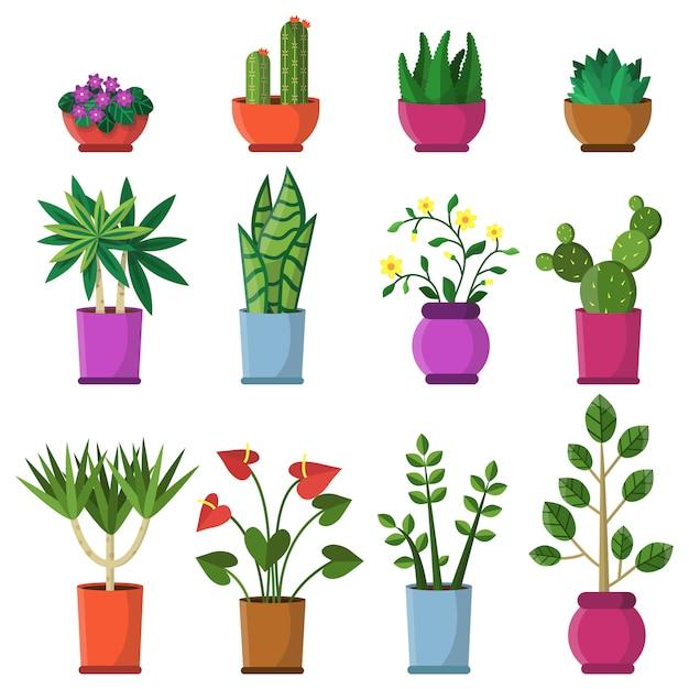 Plantas de casa em vasos. Vetor Premium