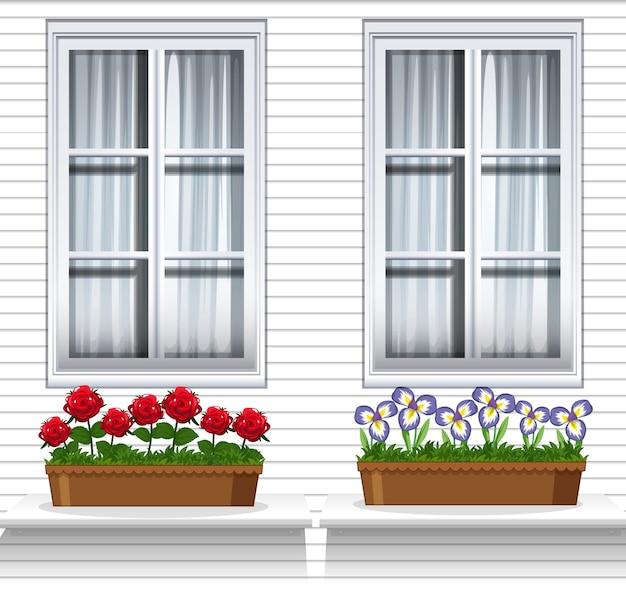 Plantas de flores perto da janela Vetor grátis