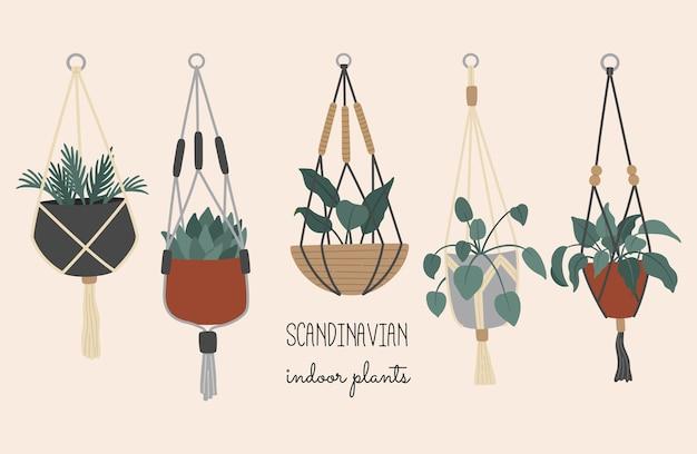 Plantas decorativas em vasos pendurados, interior escandinavo Vetor Premium