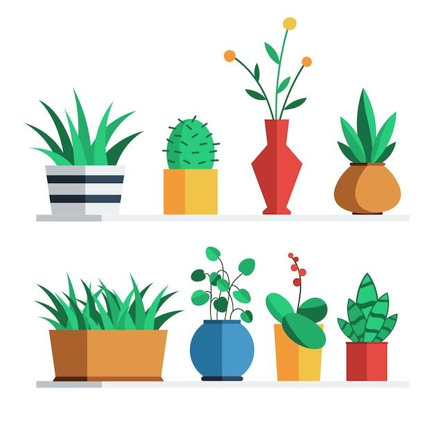 Plantas e flores em vasos coloridos na prateleira para decoração de interiores de casa ou escritório. Vetor Premium