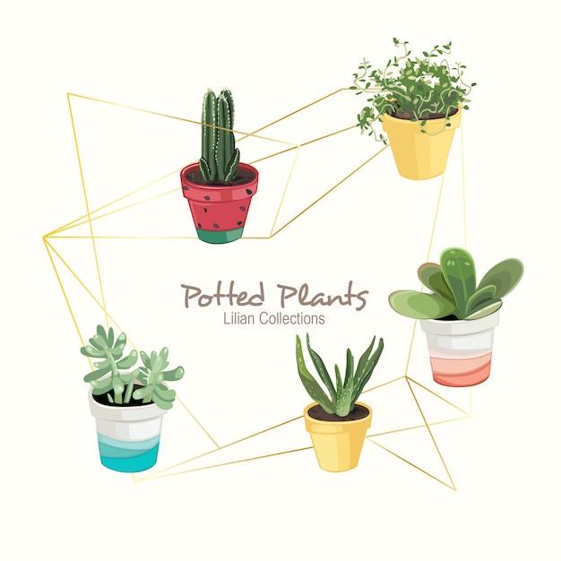Plantas em vasos coloridos Vetor Premium