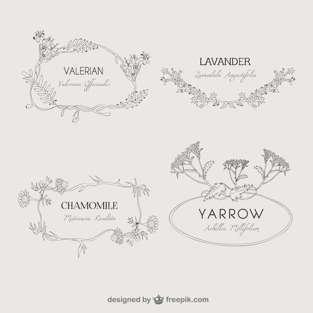 Plantas naturais emblemas Vetor grátis