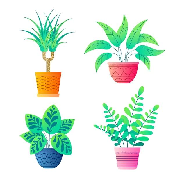 Plantas para casa em vasos de flores coleção de vetores. Vetor Premium