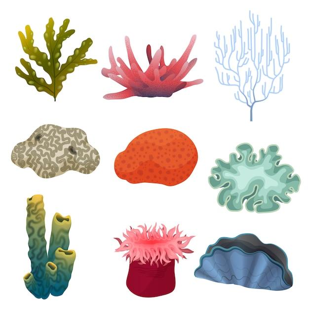 Plantas subaquáticas e recifes de corais Vetor Premium