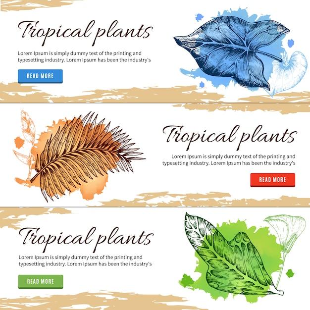 Plantas tropicais mão desenhadas banners Vetor Premium