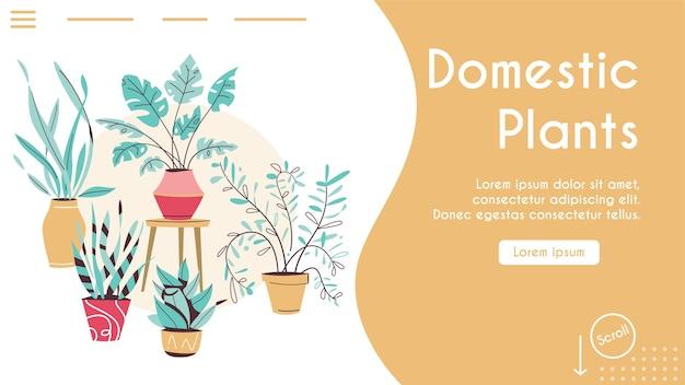 Plantas verdes em vasos definem objetos isolados. árvores de envasamento, vasos de flores pendurados estilo interior. horta doméstica, plantação de flores, planta de casa em design de interiores, vegetação no escritório Vetor Premium