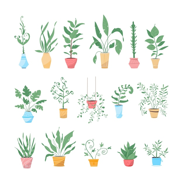 Plantas verdes em vasos definem objetos isolados. envasando árvores, vasos de flores pendurados para decoração interna Vetor Premium