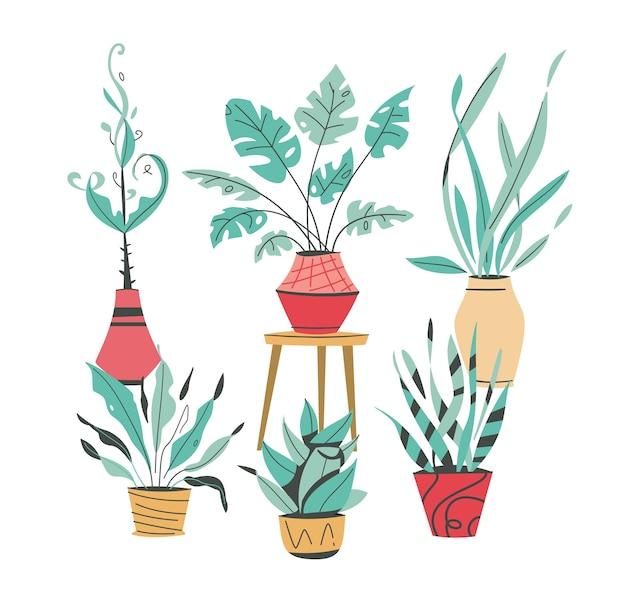 Plantas verdes em vasos envasando árvores vasos de flores pendurados estilo interior jardim doméstico plantando flores planta de casa em design de interiores vegetação no escritório Vetor Premium