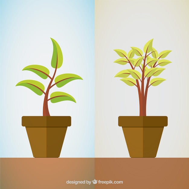 Plantas Vetor grátis