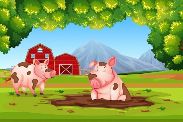 Porco na fazenda de natureza Vetor Premium