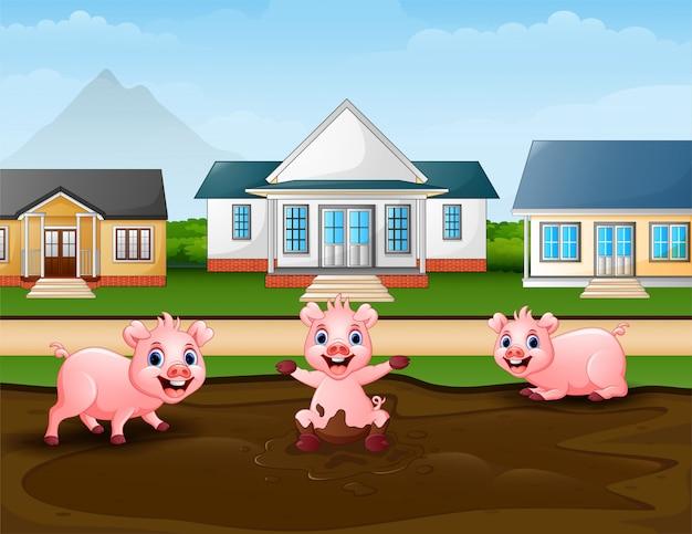 Porcos dos desenhos animados que jogam uma poça de lama no rural Vetor Premium