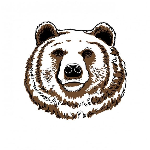 Portrite urso, ilustração. Vetor Premium