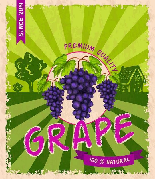 Poster retro de uva Vetor grátis