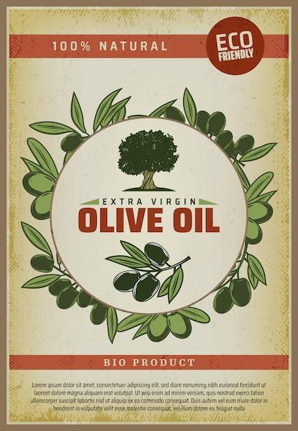Pôster vintage colorido de comida orgânica natural com inscrições de oliveira e ramos Vetor grátis