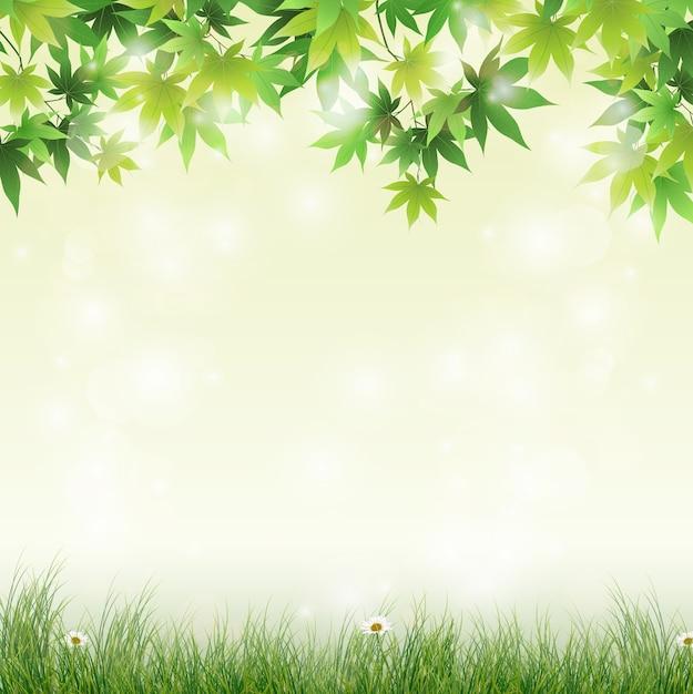 Prado primavera com fundo de folhas verdes Vetor Premium