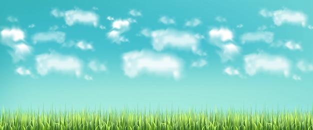 Prado verde e céu azul Vetor Premium