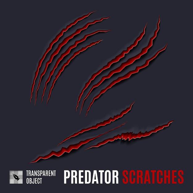Predator scratches Vetor Premium