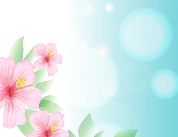 Primavera e verão luz céu azul e hibisco Vetor grátis