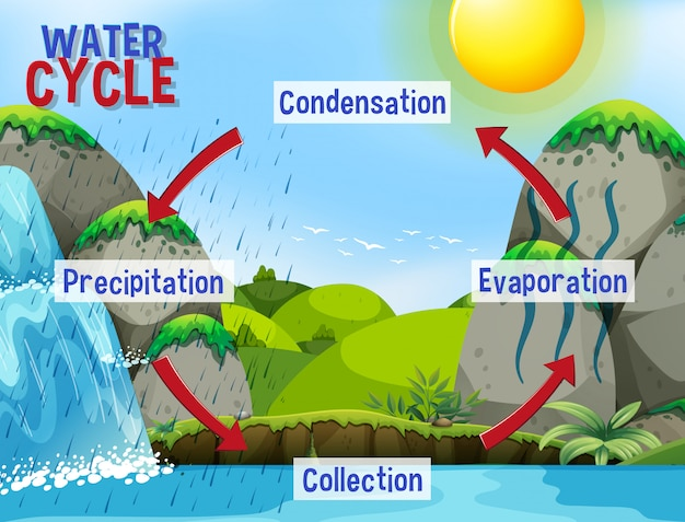 Processo do ciclo da água na terra - scientific Vetor grátis