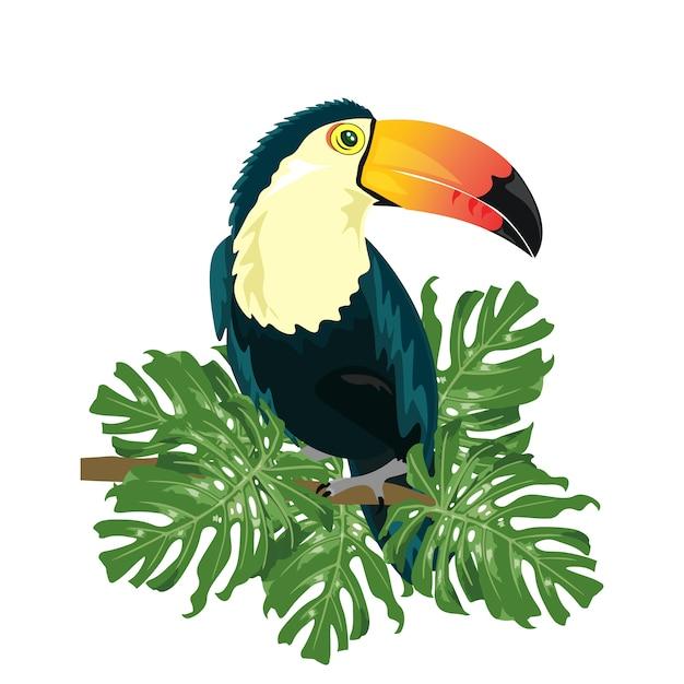 Projeto colorido tucano Vetor grátis
