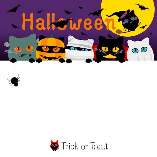 Projeto de bandeira de fantasia de gatos halloween com espaço de cópia Vetor Premium