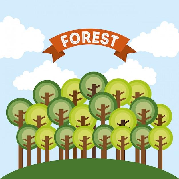 Projeto de floresta sobre ilustração vetorial de fundo de céu Vetor Premium