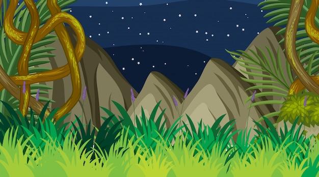 Projeto de plano de fundo da paisagem da floresta à noite Vetor Premium
