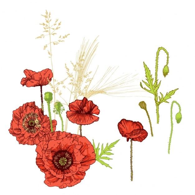 Projeto floral do fundo Vetor grátis