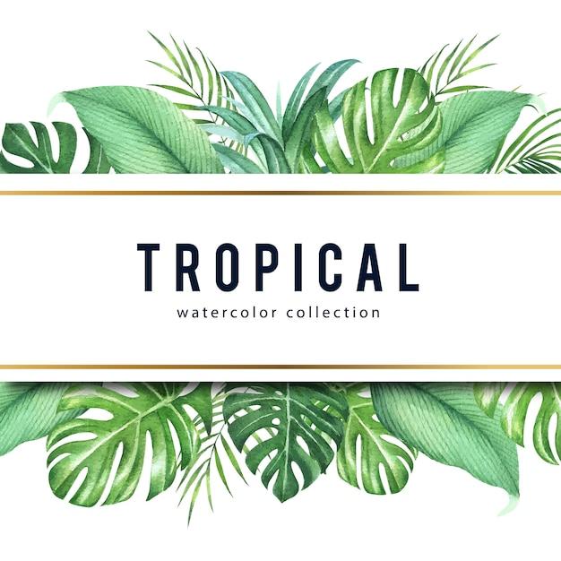 Projeto tropical do quadro com folhas do monstera e folhas de palmeira, ilustração do vetor. Vetor Premium