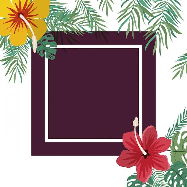 Quadro com flor e folhas Vetor grátis