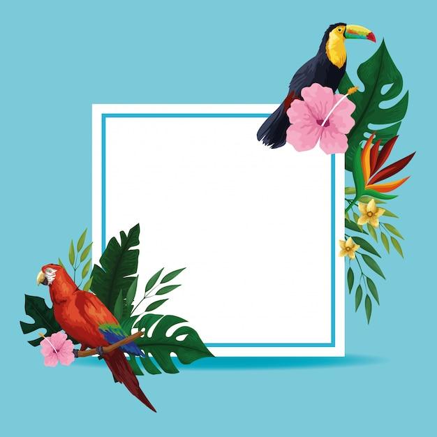Quadro de cartão em branco tropical de verão Vetor grátis