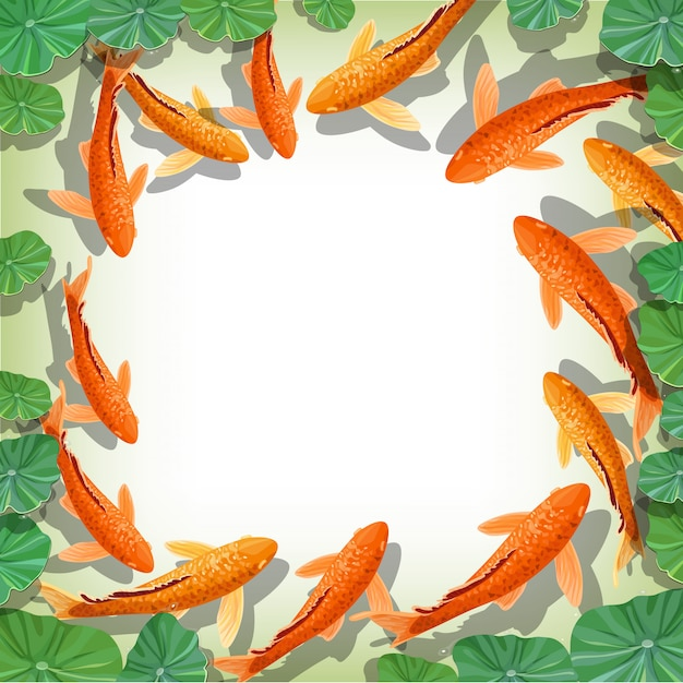 Quadro de peixes koi carpas dos desenhos animados Vetor Premium